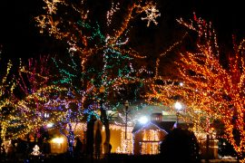 Christmas Village Lights